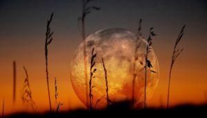 «Мы должны побывать на Луне…»
