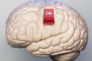 Что такое «Мозгократия»?